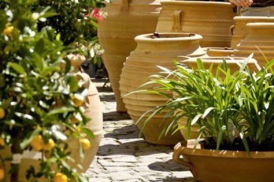 Frostsichere terracotta pflanzt pfe f r gartendekoration und direktbepflanzung der n chste for Terracotta gartendekoration